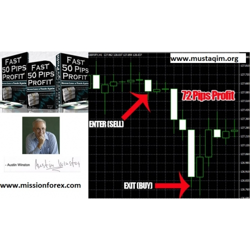 Forex fast gainer ea review