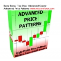 B_rry Burns- Top D0g- Advanced Course- Advanced Price Patterns(BONUS CyberiaTrader - expert for MetaTrader 4)