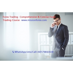 Forex Trading- Comprehensive & Concise Forex Trading Course