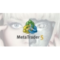 Learn MQL5 - Build an 8-Currency Hedging Robot (MetaTrader 5)