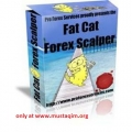 Fat Cat Forex Scalper Bonus Airbrush Tutorials Collection