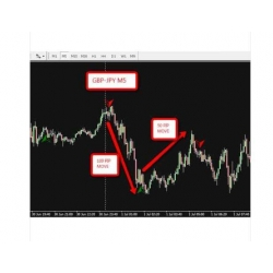 Amazing MT4 Forex Indicator with bonus Diamond Power Trend trading system
