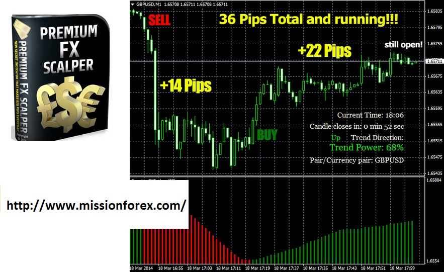 Easy Walker Fx- expert advisor with bonus Premium fx-scalper indicator