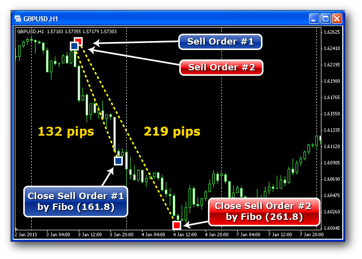 Forex 1000 pips ea