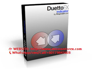 DuettoIndicatorBox_RENDERED