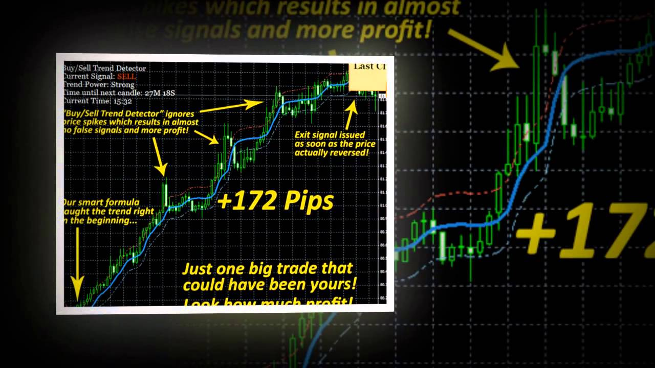 Amazing forex trend signal software