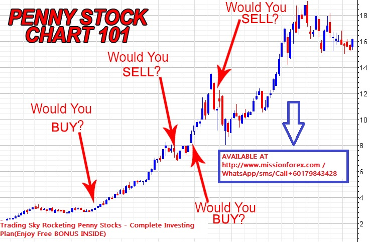 Penny-Stock-Chart-101