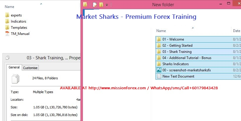 Market Sharks - Premium Forex Training22