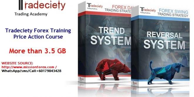 Tradeciety Forex Training