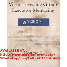 Vision Group Executive Mentoring Elliot Wave