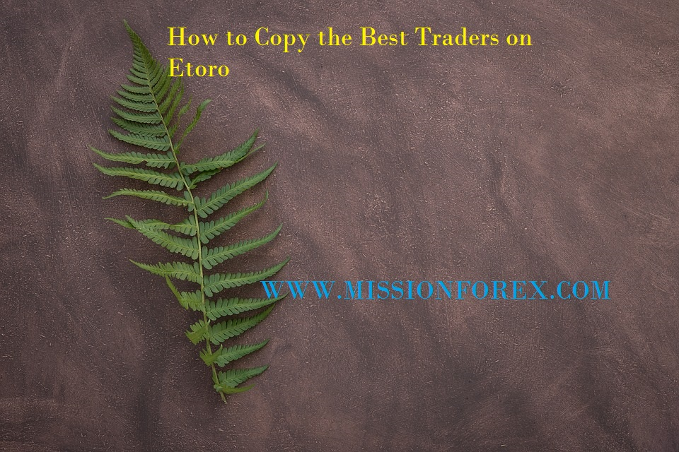 How to Copy the Best Traders on Etoro1