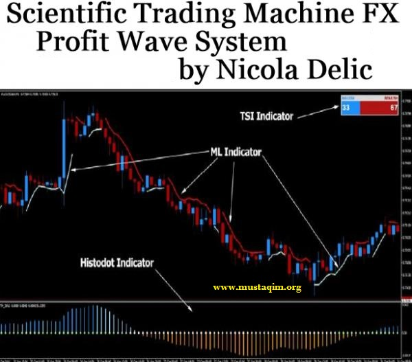 Scientific Trading Machine FX Profit Wave System BONUS How to be a Profitable Forex Trader