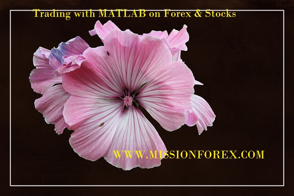 Trading with MATLAB on Forex & Stocks