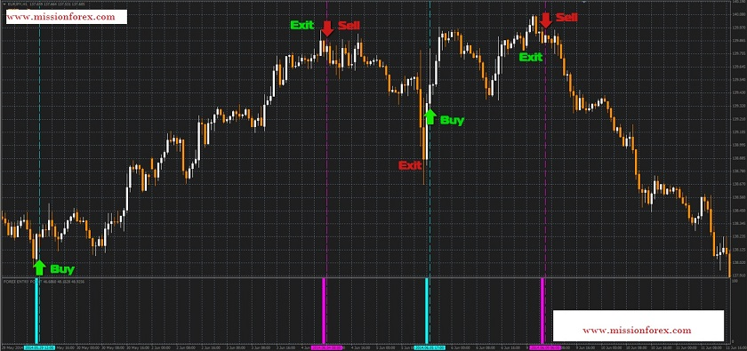 Build A Career In Forex Trading- Learn Fundamental Analysis(bonus Forex Entry Point)