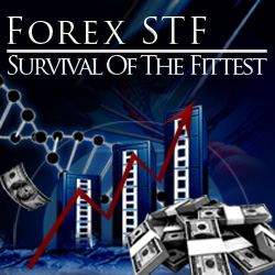 ForexSTF