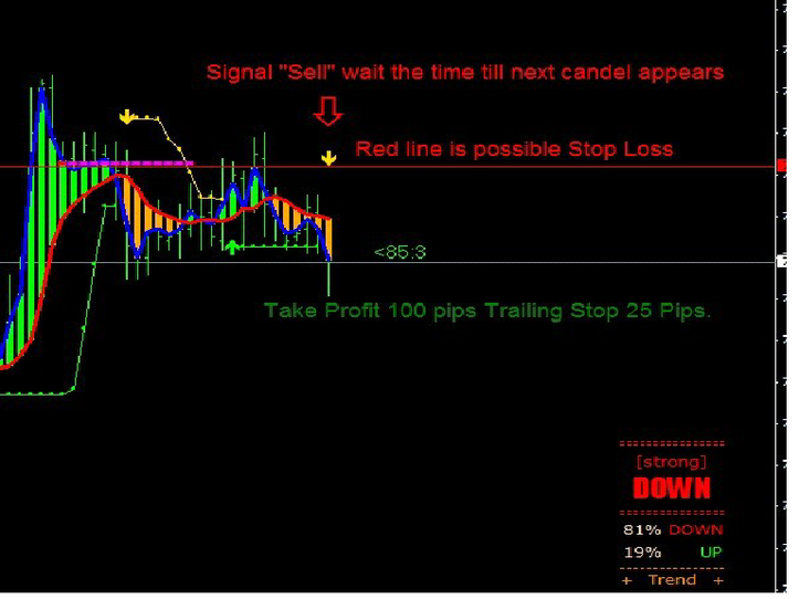 SEFC PALATO DAILY STRATEGY (BONUS: Moonmoon Biswas – How to Become a Successful Day Trader)