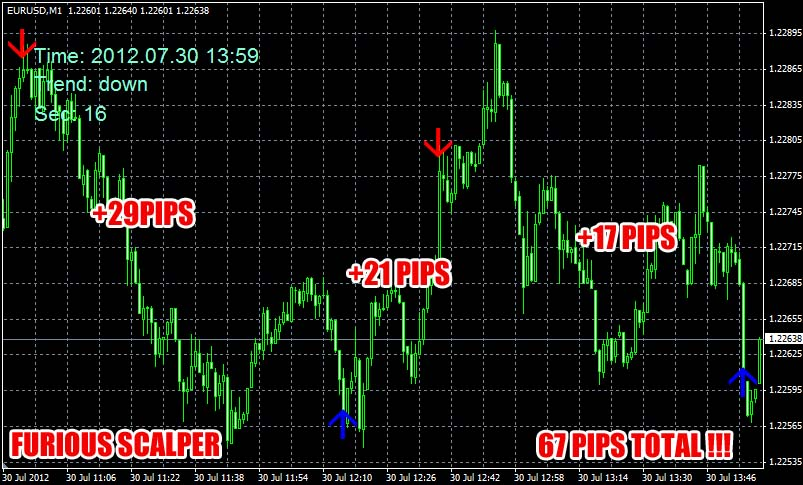 100 Pips a Day Forex Picture