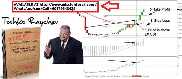 How-To-Make-A-Fortune-Trading-Scientifically
