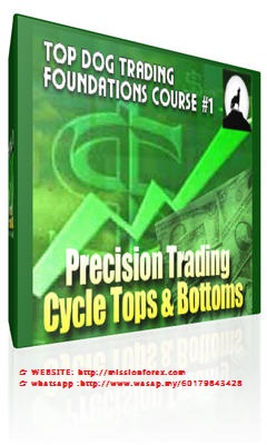 Top Dog Trading Course complete and Intermediate level